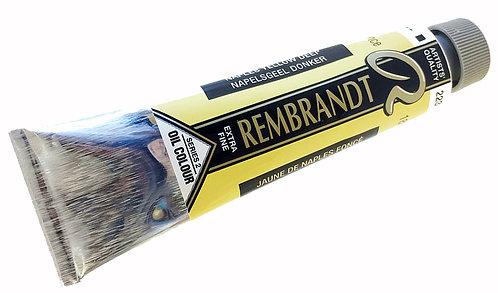 Huile Rembrandt Jaune Naples Foncé 223 S2