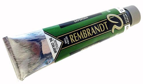 Huile Rembrandt Vert de Vessie 623 S2