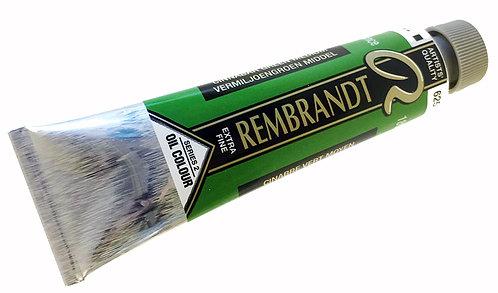 Huile Rembrandt Cinabre Vert Moyen 625 S2