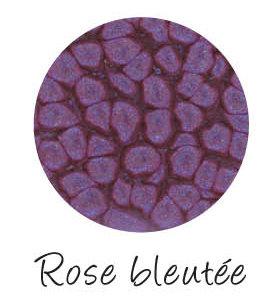 Fantasy Prisme Rose Bleutée