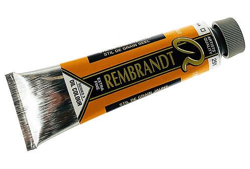 Huile Rembrandt Stil de Grain Jaune 251 S3