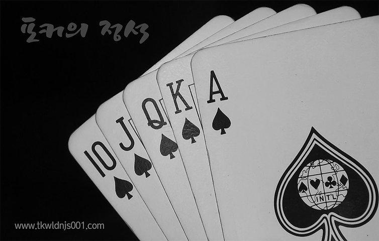 포커의 정석 p-109321.jpg