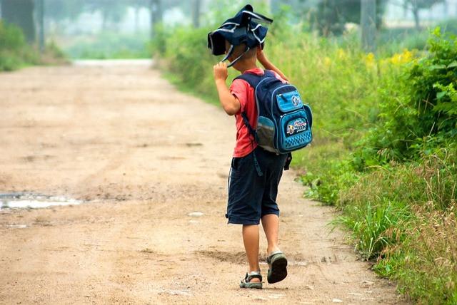 parcours scolaire