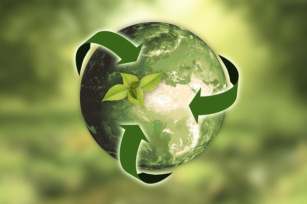 recyclage et terre verte