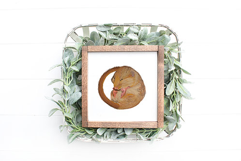Tiny Sleeping Dormouse Mini Print | Original Design | Signed
