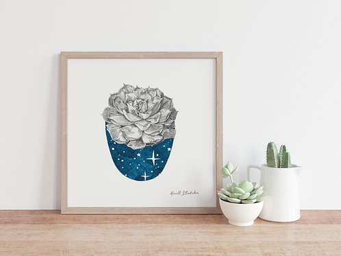 Succulent Wall Art STARRY NIGHT | From Original Drawing by Howell Illustratio