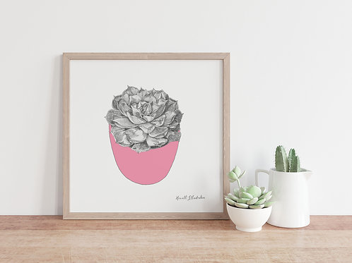 Succulent Wall Art PINK  | From Original Drawing by Howell Illustratio