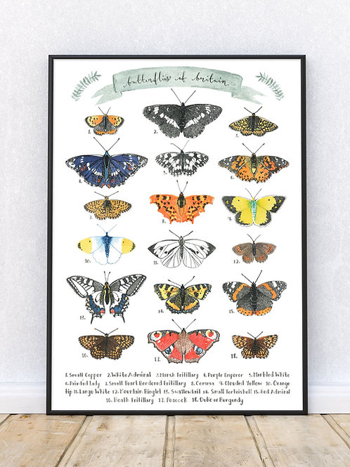 Butterflies of Britain Art Print or Poster | Giclee | Signed