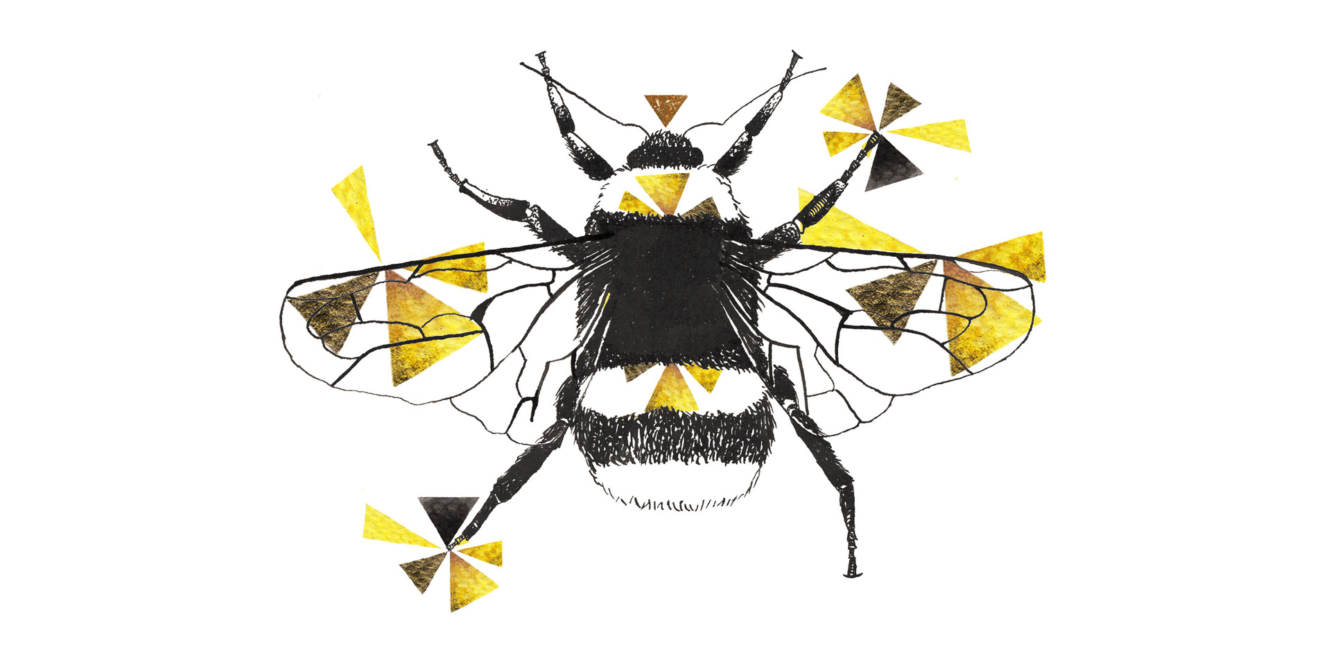 Geometric Bumblebee Drawing