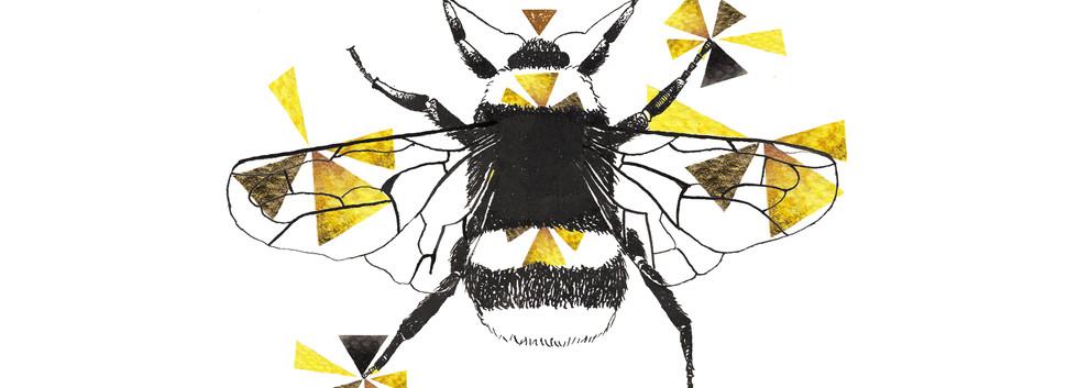 Geometric Bumblebee Drawing