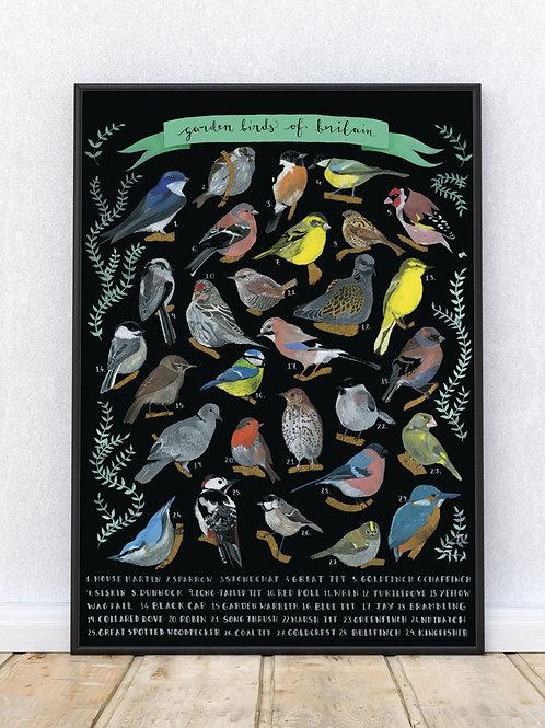Garden Birds of Britain Print | Open Edition | Signed