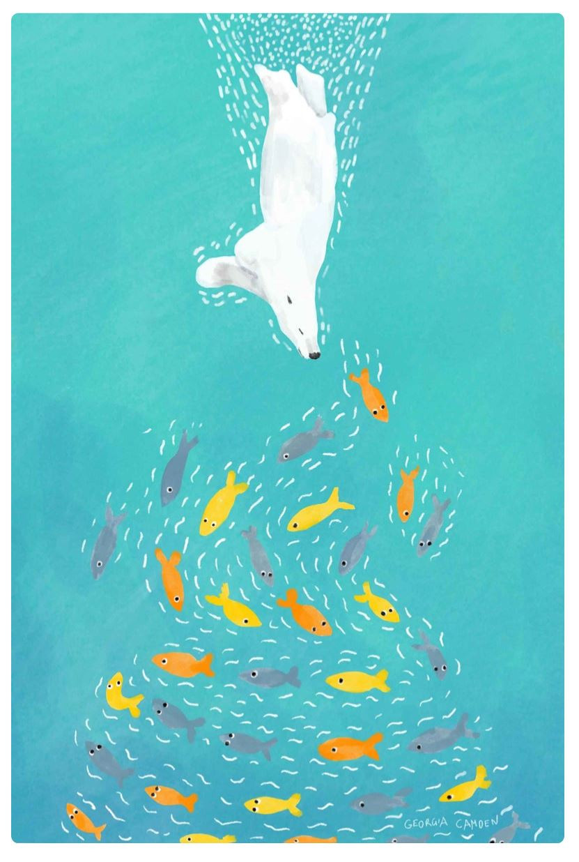 polar bear art diving for brightly coloured fish