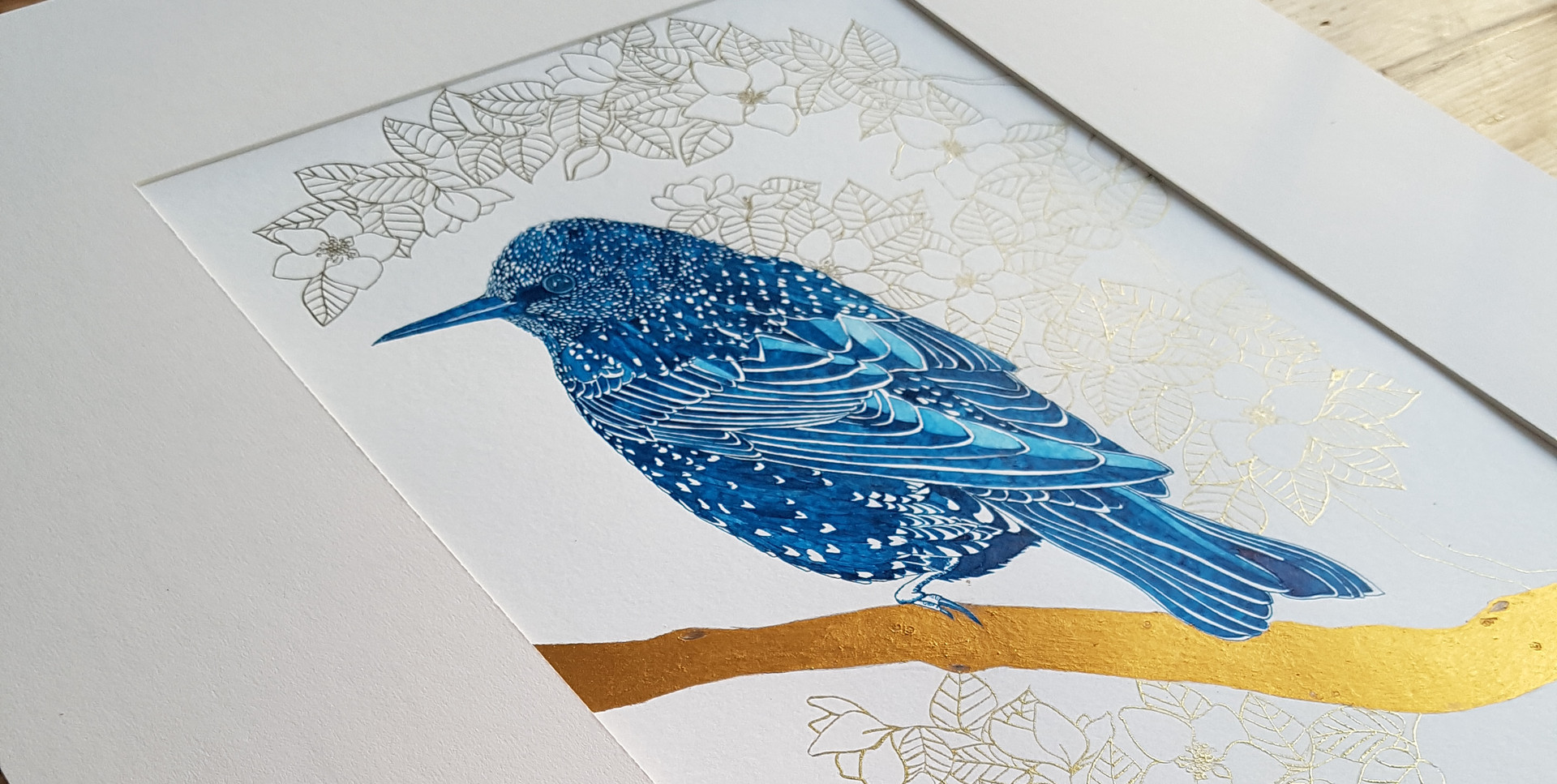Starling Artwork by Howell Illustration