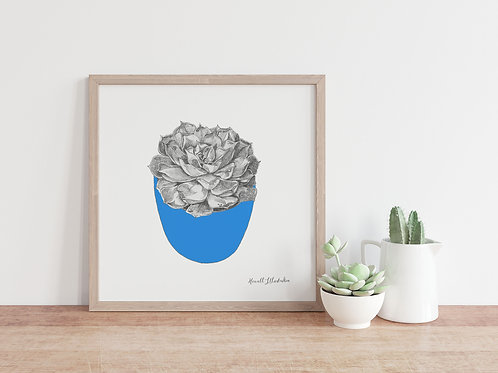 Succulent Wall Art BLUE | From Original Drawing by Howell Illustration