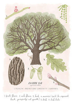 RGB Tree.jpg