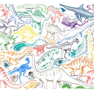 A Personal Project on Dinosaurs