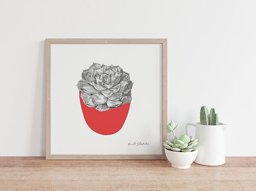 Succulent Wall Art RED  | From Original Drawing by Howell Illustratio