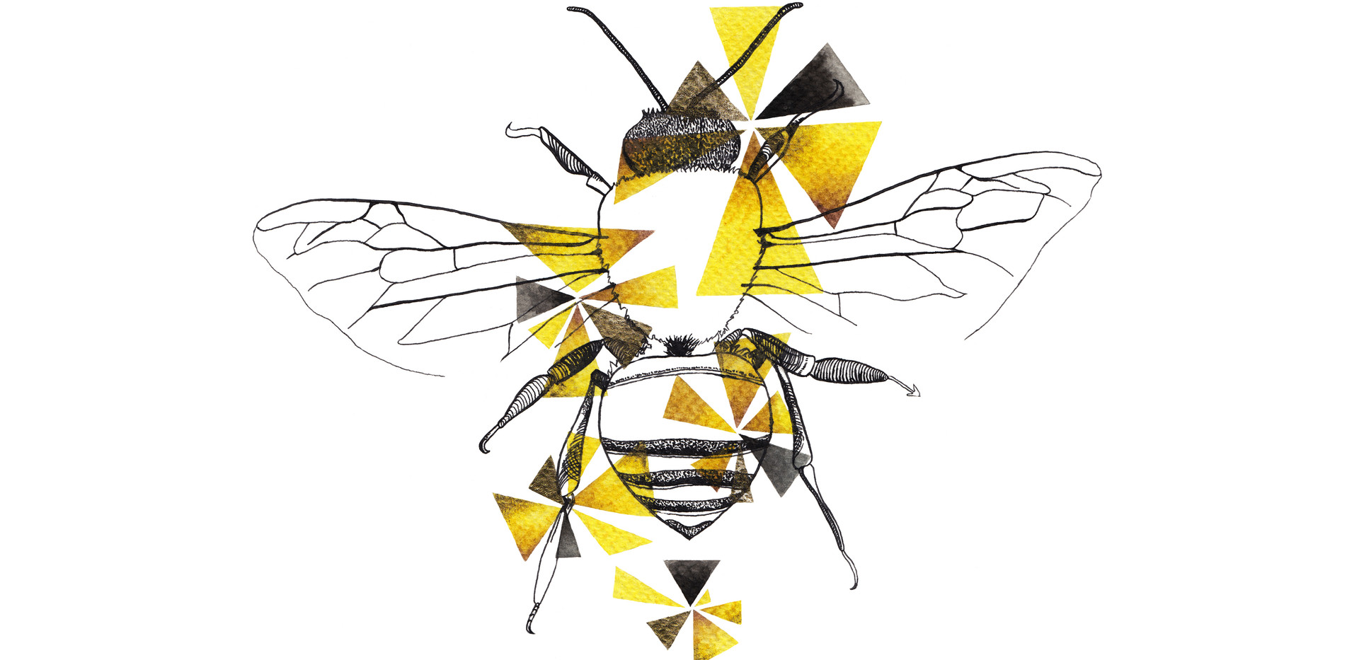 Geometric Honeybee Drawing