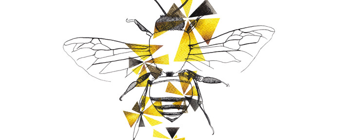 Geometric Honeybee Drawing