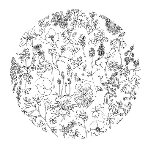 Wildflowers Embroidery Pattern | Download for Charity