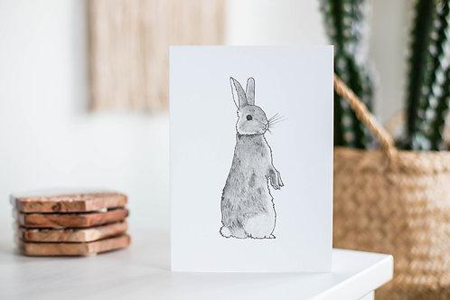 Woodland Wildlife Cards | Original Animal Designs | Eco Friendly