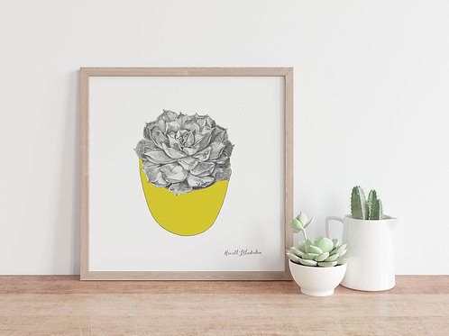 Succulent Wall Art YELLOW | From Original Drawing by Howell Illust