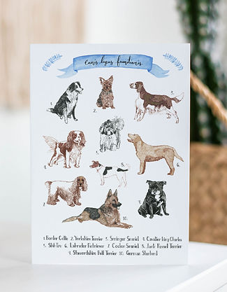 Dog Breeds Mantlepiece.jpg