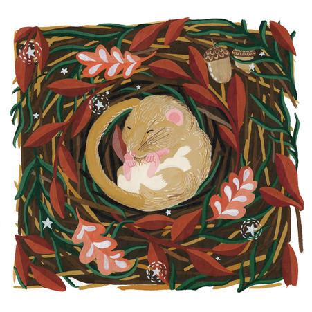 Dormouse in Nest Illustration