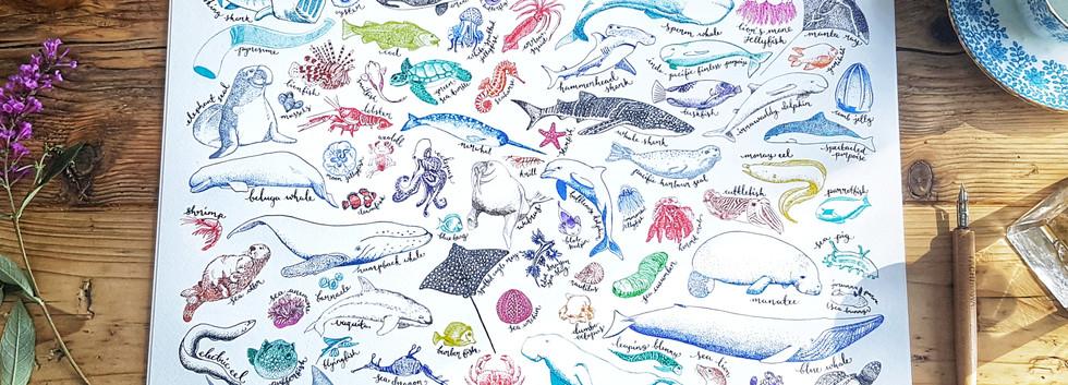 Sea Creatures Print by Howell Illustrati