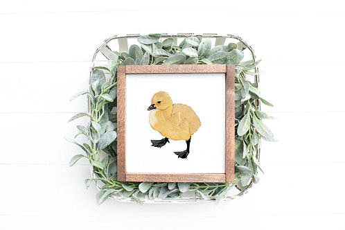 Duckling Art Print   Giclee   Duckling Drawing