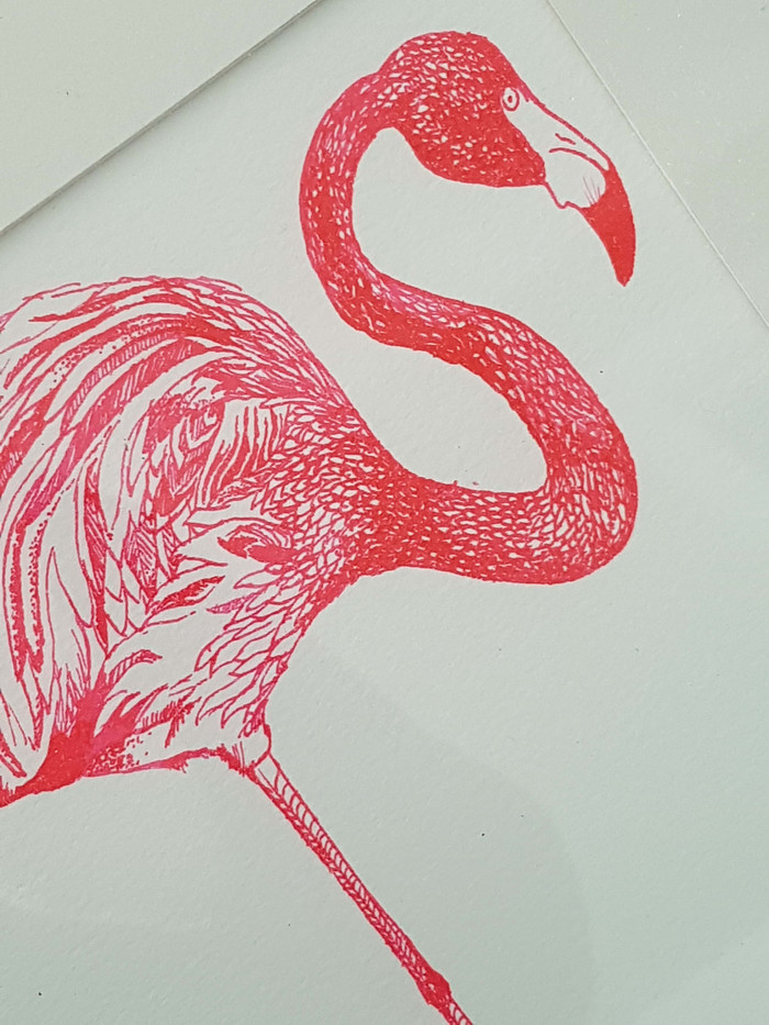 Flamingo Pen and Ink Illustration