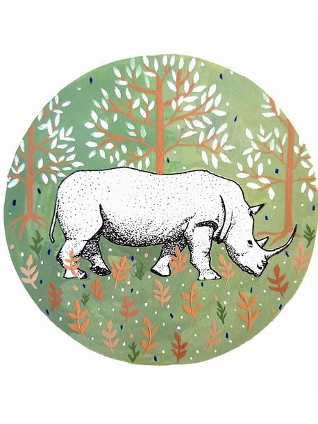 The Last White Rhino