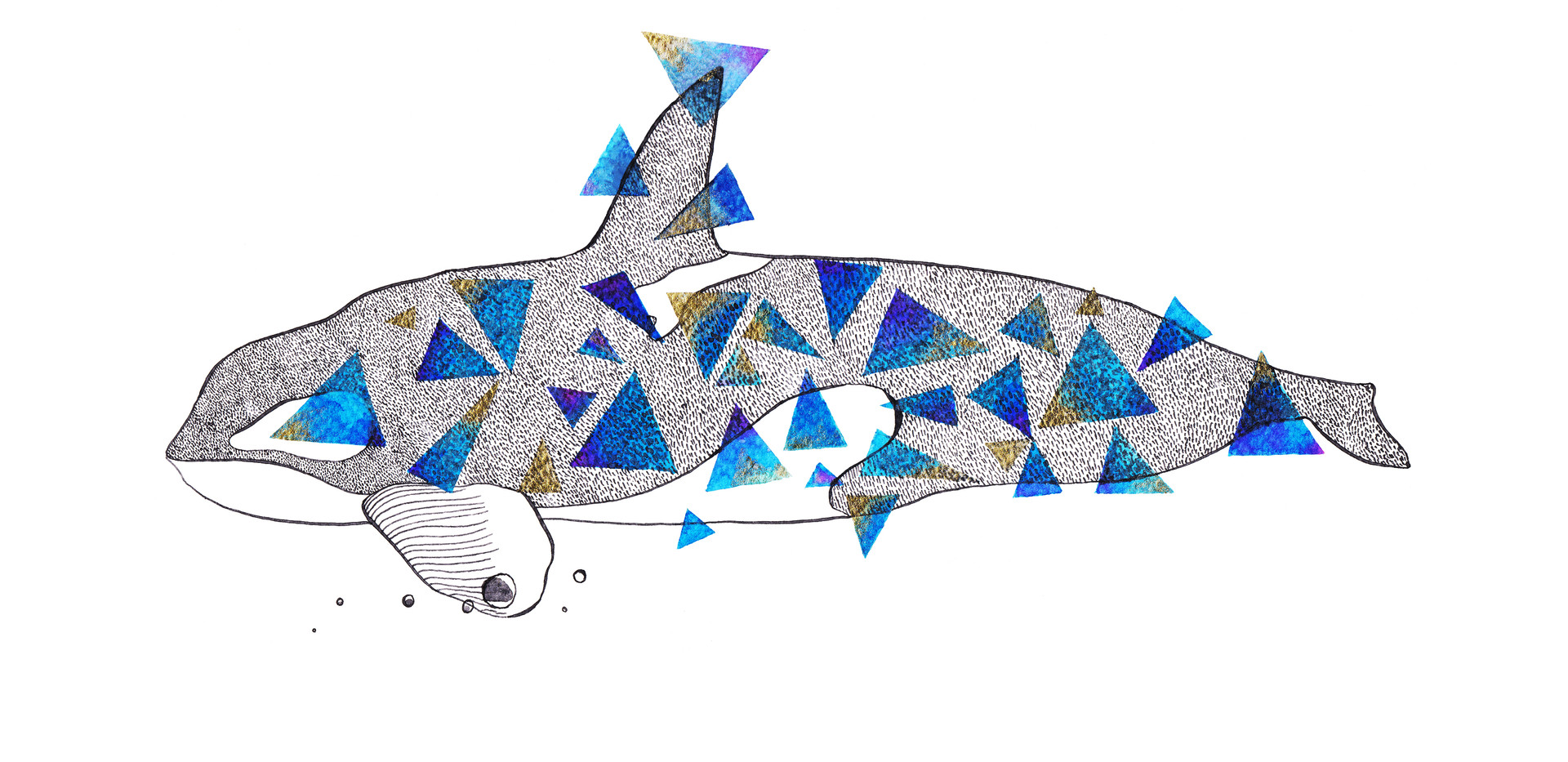 Geometric Whale Illustration
