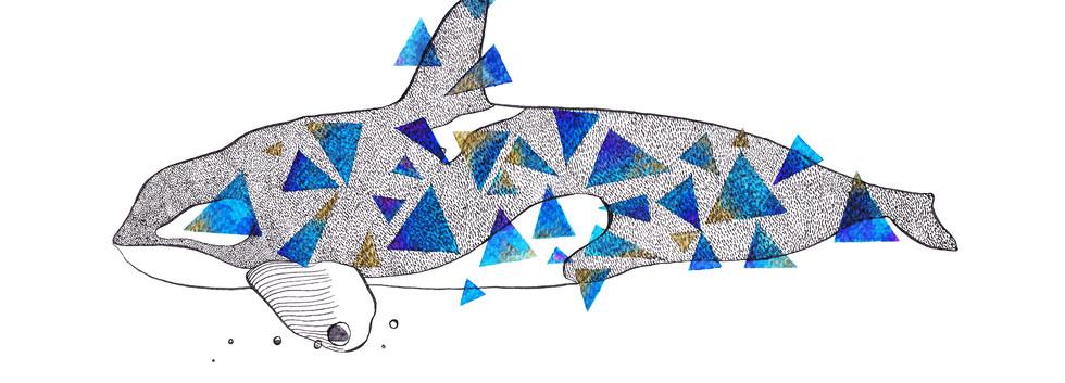 Geometric Whale Illustration