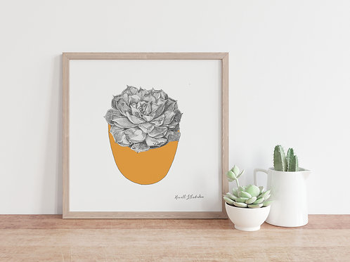 Succulent Wall Art ORANGE  | From Original Drawing by Howell Illustration