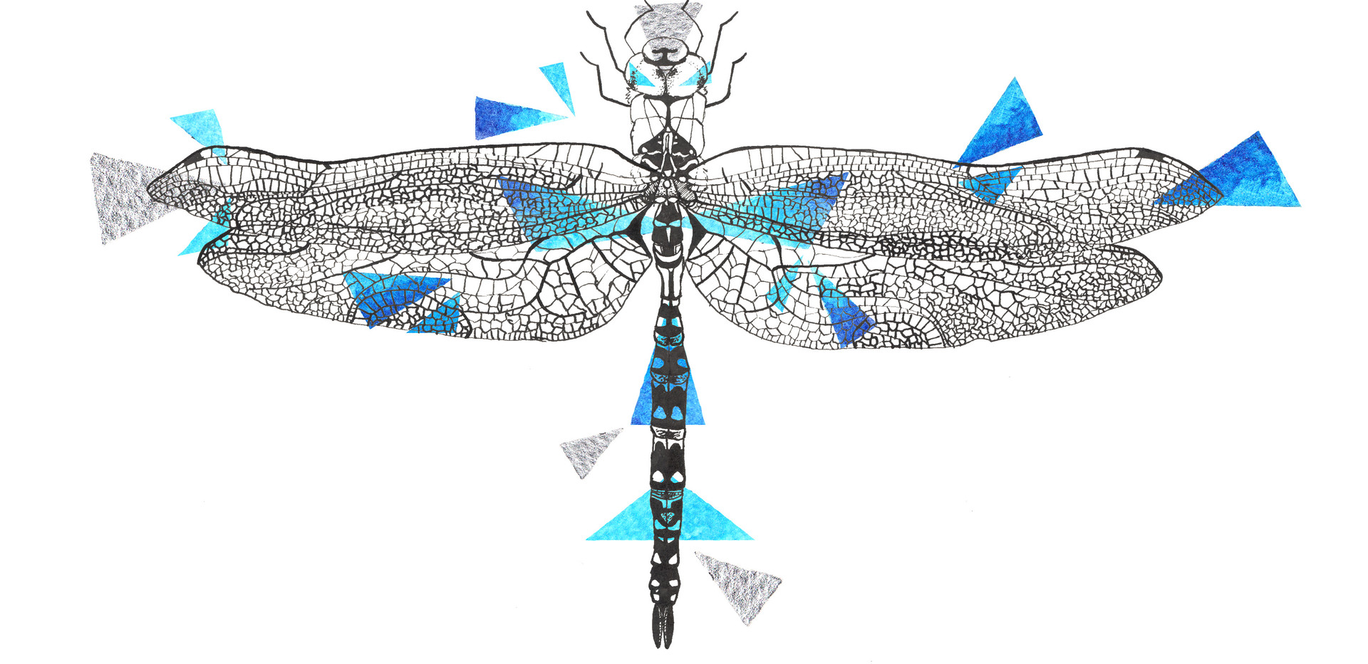 Geometric Dragonfly Drawing