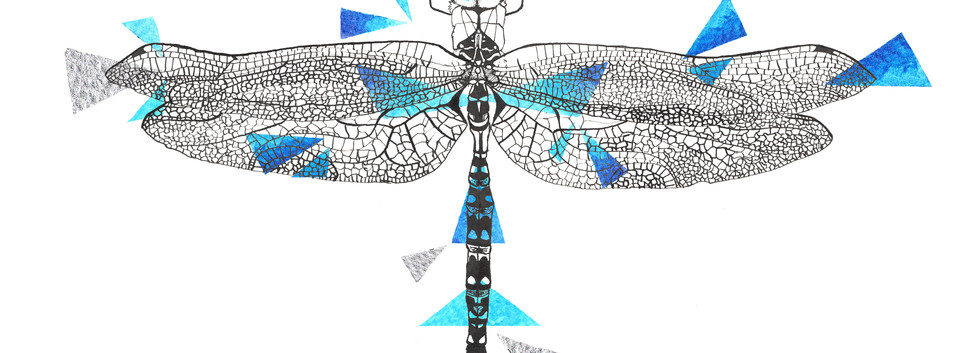Geometric Dragonfly Drawing