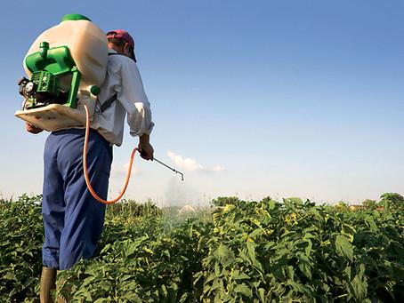 Пестициди та агрохімікати: як використовувати законно