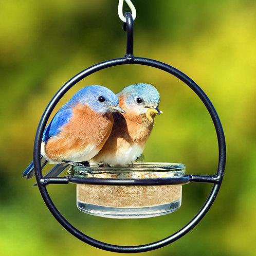 Hummble Basic™ Bird Feeder