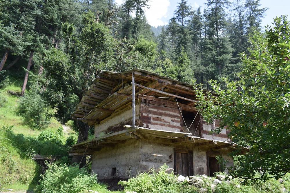 Beautiful House on the way around Dharamkot .