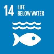 SDG 14 Life Below Water Oceans