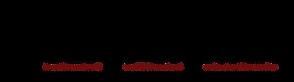 Caesar Logo Transparent.png