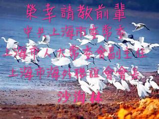 拜訪上海海外联谊会 - 沙海林常委