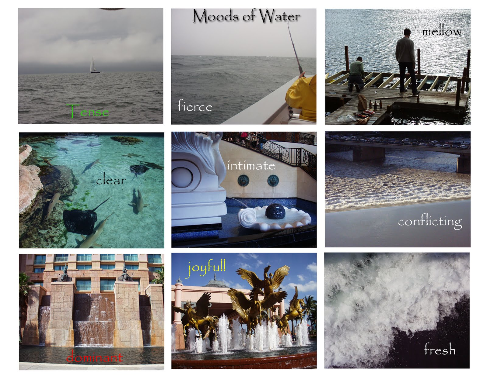 mood board of different expressions water can evoke(personal photos)