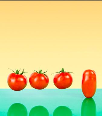 Tomato 3 instore 1 in the bin