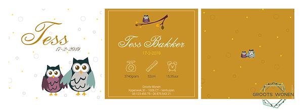 Geboortekaartje Tess.png