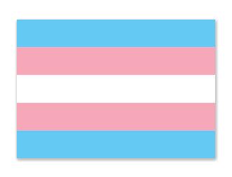 Sticker   Transgender