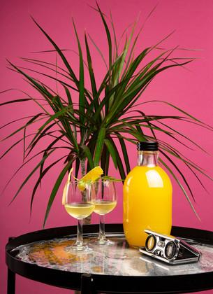 Limon Cello promotion magazine
