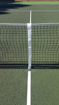 New center pin, net and posts