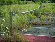 Tennis Court Demolition and removal services
